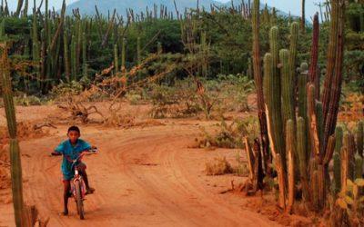 Citan a directora de ICBF a debate por desnutrición de niñas y niños en La Guajira