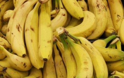 Avanzarán en EU reclamaciones contra Chiquita por financiamiento de paramilitares colombianos