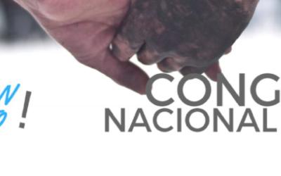 Convocatoria al Congreso Regional y Nacional de Paz