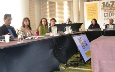 Organizaciones recomiendan a la CIDH protección a defensoras del territorio y medio ambiente en la región andina