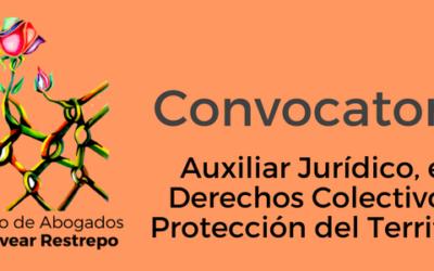 Convocatoria Auxiliar Jurídico, eje Derechos Colectivos y Protección del Territorio