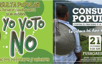 Consultas Populares de Fusagasugá y San Bernardo, Cundinamarca, son constitucionales, legítimas y democráticas