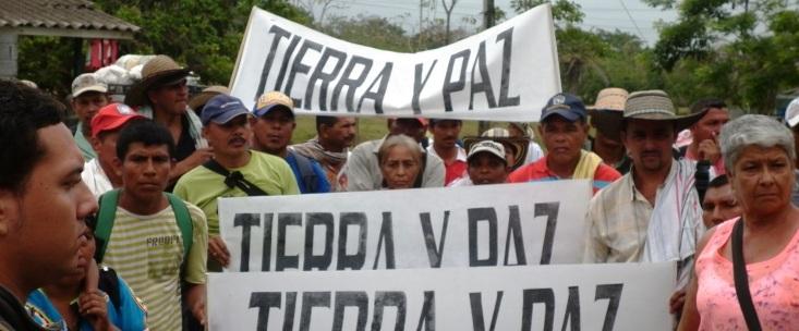 Condena a Sor Teresa Gómez por desplazamiento reconoce que palma en Urabá fue proyecto de expansión paramilitar