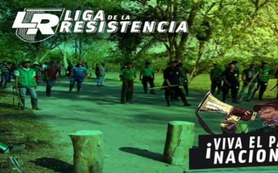 Liga de la Resistencia: Informe de derechos humanos en el paro nacional