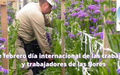 14 de febrero: Día internacional de los trabajadores y trabajadoras de la floricultura
