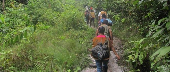 Enfrentamiento entre grupos armados ilegales deja en evidencia la crisis humanitaria del Pueblo Awá