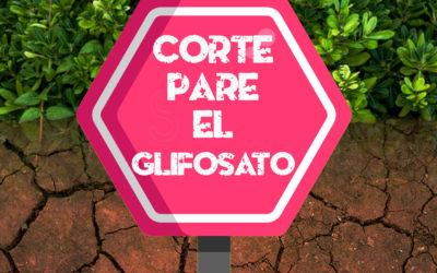 Solicitamos a la Corte Constitucional suspender el permiso ambiental  para la retoma de las aspersiones con Glifosato en el país