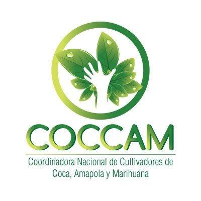 Coccam rechaza decreto presidencial por el cual se reanudaría el programa de aspersiones aéreas con glifosato