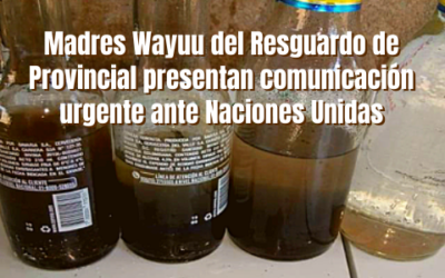 Madres Wayuu del Resguardo de Provincial presentan comunicación urgente ante Naciones Unidas